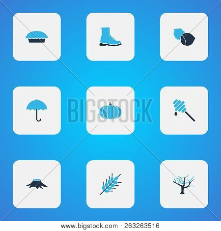Seasonal Icons Colored Set With Hazelnut, Pumpkin, Wheat And Other Filbert Elements. Isolated Vector