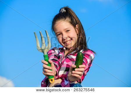 Little Girl Gardener Work At Family Farm. Kid Cheerful Gardener Holds Rake And Cucumber Blue Sky Bac