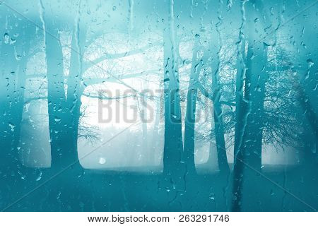 Autumn Morning Forest Through The Window Glass In The Rain. Glass Wet Autumn Background. Wet Window