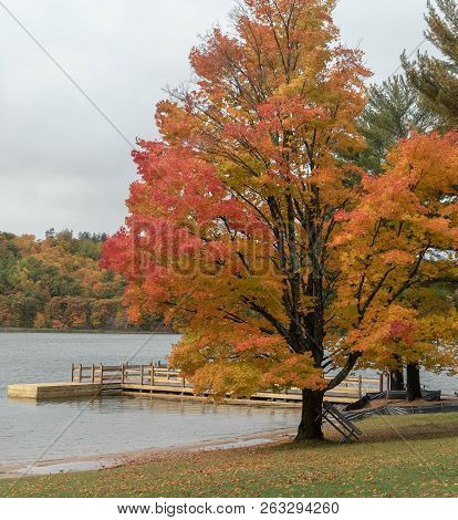 Scenic Autumn Day On A River Lined With Colorful Orange And Yellow Trees And A Dock