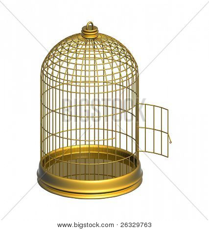 High resolution image of empty gold cage.