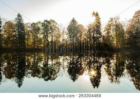 Landscape With River. Trees And Bushes Are Reflected In Water Of River. Spring Forest. Water Surface