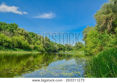 Summer Day On The River - Leaves Of Water Lilies, Blue Sky With Clouds. Beautiful River Landscape. T