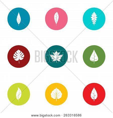 Foliage Icons Set. Flat Set Of 9 Foliage Vector Icons For Web Isolated On White Background