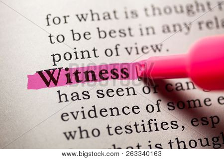 Fake Dictionary, Dictionary Definition Of The Word Witness.
