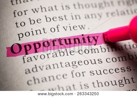 Fake Dictionary, Definition Of The Word Opportunity.