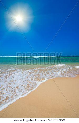 Beach sun summer