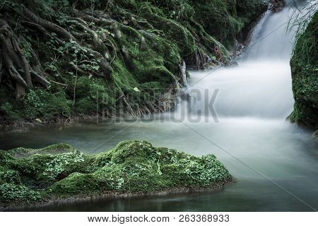 Tree Roots Covered With Green Moss And Cascade Flowing In The Woods in Long Exposure