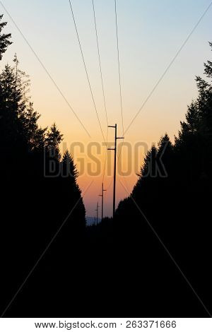 Dark Cloudy Sunrise With Tree Silhouette And Power Lines