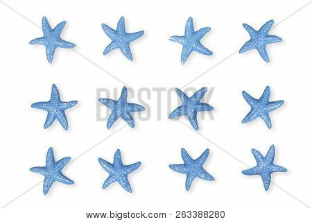 Twelve Blue Starfish On White For Backgrounds