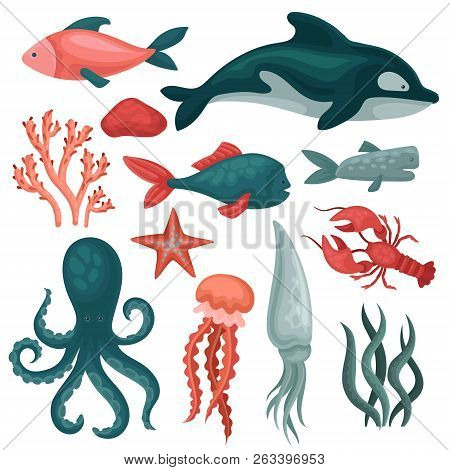 Flat Vector Set Of Sea Animals And Objects. Fishes, Jellyfish, Red Crab, Squid, Octopus, Seastar, Se