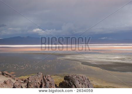 mountain reflecting in the lake with flamingos laguna colorada bolivia poster