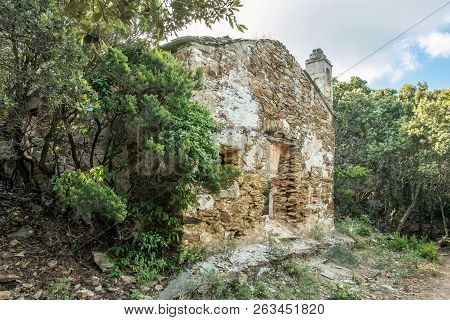 Abandoned Chapel In Woodland On Cap Corse In Corsica