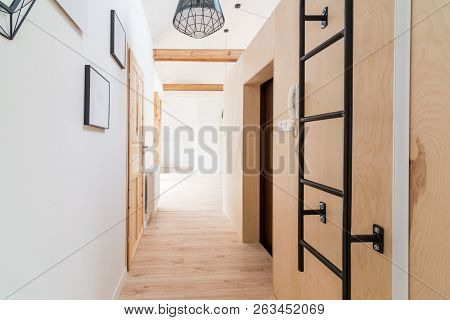 Bright Apartment Hall With Wooden Doors.