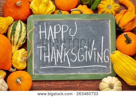 Happy Thanksgiving  - white chalk handwriting on a slate blackboard surrounded by winter squash and gourds