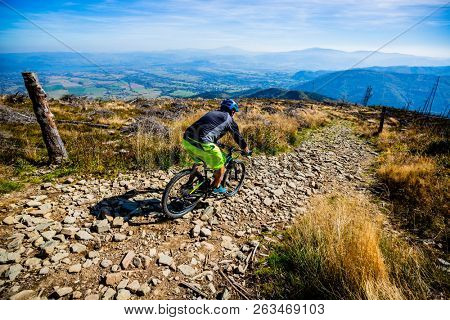 Mountain biker cycling in autumn mountains forest landscape. Man cycling MTB flow trail track. Outdoor sport activity. poster