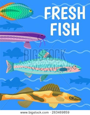 Fresh Fish In Blue Water Color Vector Illustration, Different Underwater Animals With Shine And Glos