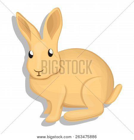 Wild Rabbit Icon. Cartoon Of Wild Rabbit Vector Icon For Web Design Isolated