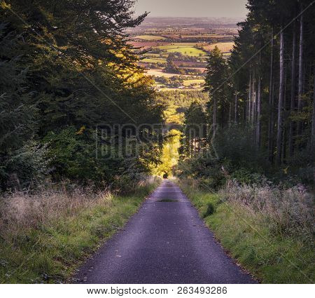 Landscape Rural Image Of A Forest Woodland Scene With Footpath And Countryside Views Beyond The Tree