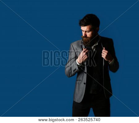 Sexy Male, Brutal Macho, Hipster. Handsome Bearded Businessman In Classic Suit. Male In Suit, Man In