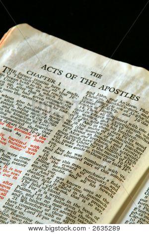 Bible Series Apostles