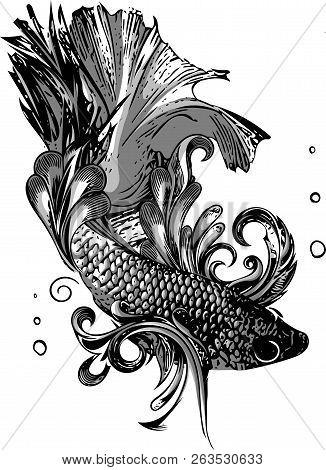 Gold Betta Siamese Fighting Fish, Betta Splendens Pla-kad Thai. Betta Fish