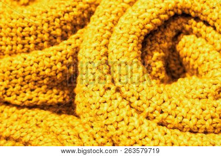 Trendy Ceylon Yellow Color Woolen Knitted Fabric Close-up, Texture, Background