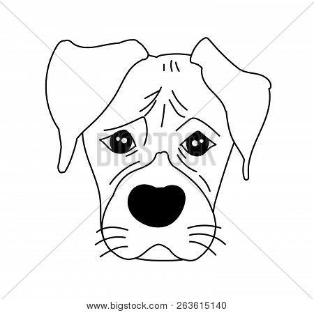 Monochrome Boxer Dog Cute Head And Expression Face - Vector Hand Drawn Illustration Isolated On Whit