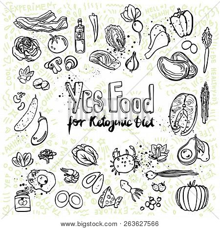 Ketogenic vector sketch illustration. Healthy keto food with texture and decorative elements - fats, proteins and carbs on one vector illustration. Low carbs ketogenic diet food isolated on white background. Cartoon sketch keto food, icon set poster