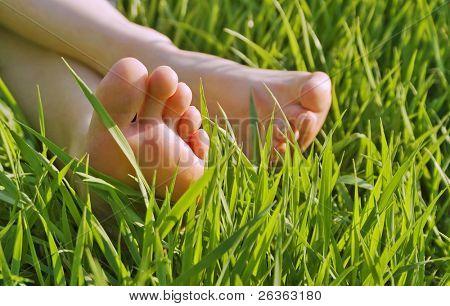 bare feet in green grass