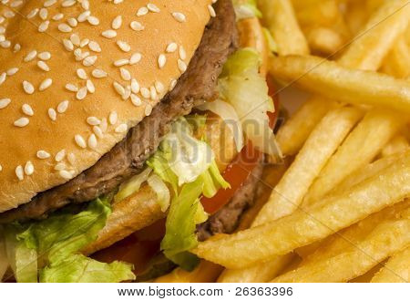 burger and french fries close-up