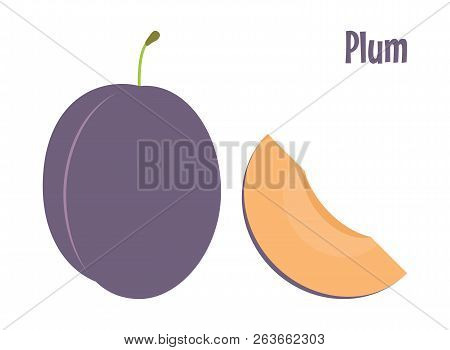 Fresh Violet Plum And A Piece. Raw Food Vector Illustration.
