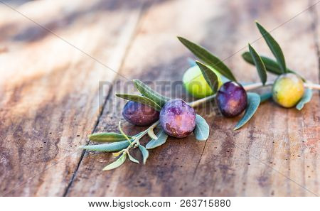 Mediterranean Green And Black Olive Fruits Branch On Rustic Wooden Table