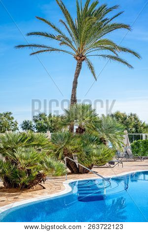 Swimming Pool With A Palm Tree Against A Blue Sky