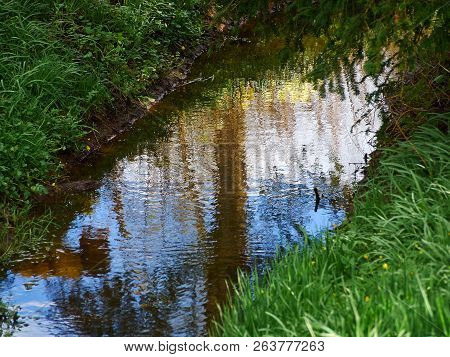 Small Beautiful Brook Stream River In A Green Lush Forest Nature Background