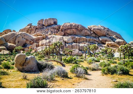 Balancing Desert Rocks In Joshua National Park, California