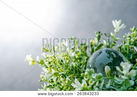 World Globe Cystal Glass On Green Leaves Bush. Environmental Conservation. World Environment Day. Gl