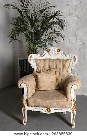 Antique White Sofa Armchair Standing Next To A Plant Pot On White Wall.