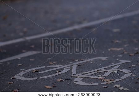 Oblique View On Empty Cycle Path In Early Morning Light With Autumn Leaves - Urban Commuting Concept