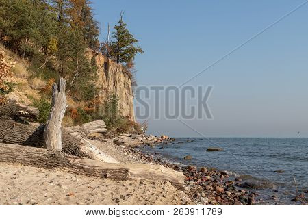 Cliff By The Baltic Sea In Eastern Europe. Sand Cliff On The Seacoast. Season Of The Autumn.