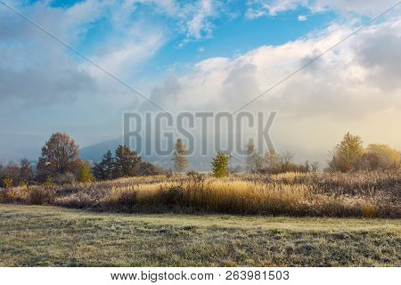 Trees On The Field With Tall Dry Grass. Cloud Above The Distant Mountain In Fog. Magical Autumn Weat