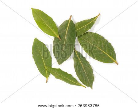 A Selection Of Bay Leaves On A White Background