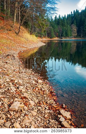 Shore Of Synevyr Lake. Fallen Autumn Foliage On The Rocky Bank. Wooden Pier In The Distance. Beautif