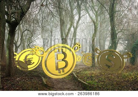 Coin Bears Lost In Foggy Forest At The Bottom Of The Valley. Bearish Currency Descending Trend. Cree