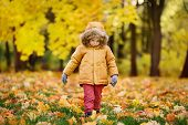 Little boy during stroll in the forest at sunny autumn day. Active family time on nature. Hiking with little kids. Leaves rustle. poster
