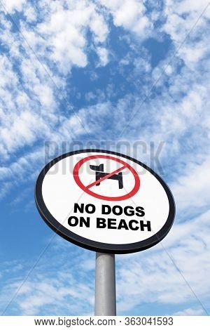 No Dogs On Beach Sign