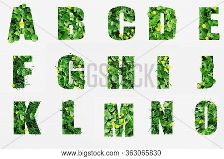 Letters A B C D E F G H I J K L M N O Made Of Green Grass Isolated On White.letters From Green Veget