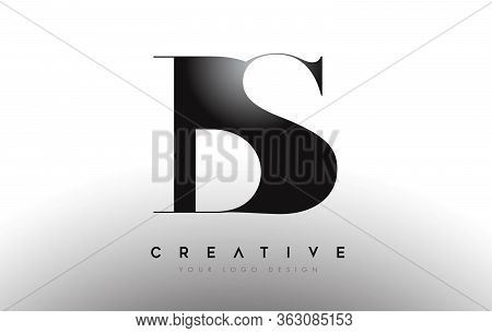 Bs Letter Design Logo Logotype Icon Concept With Serif Font And Classic Elegant Style Look Vector
