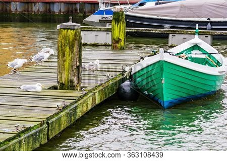 Seagulls Relaxing On The Pier By Small Green Boat In Winter, Harlingen, Netherlands