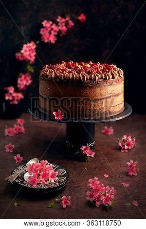 Homemade Layered Dark Chocolate Cake With Sour Cherries